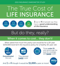 The True Cost of Life Insurance infographic